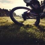 drift-græs-Kopi-150x150 Photo gallery